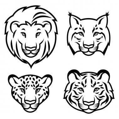 Feline heads isolated