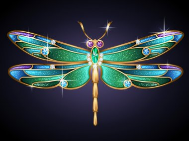 Jewel dragonfly