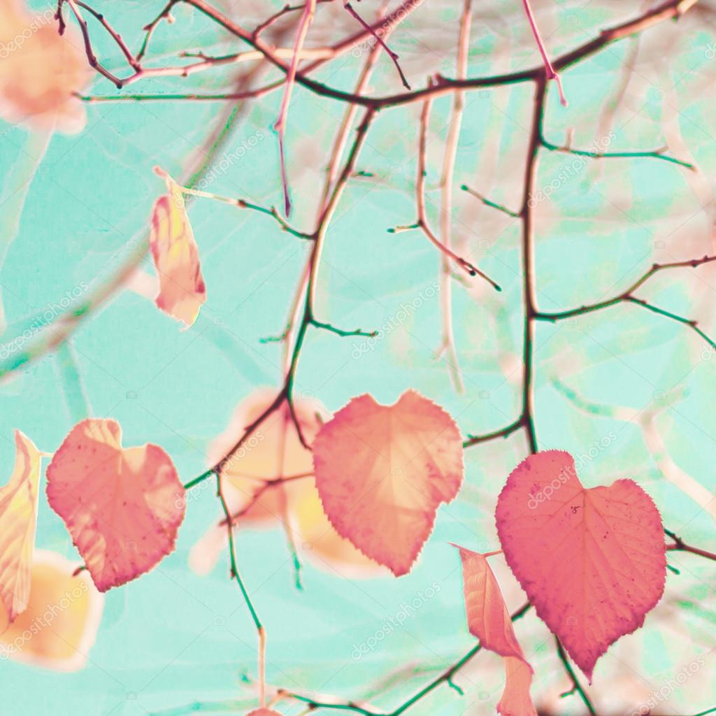 Heart-shaped Autumn Leafs