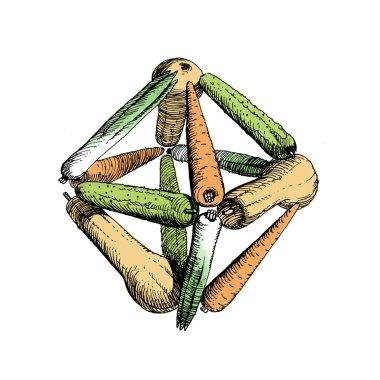 octahedr on of vegetables-5