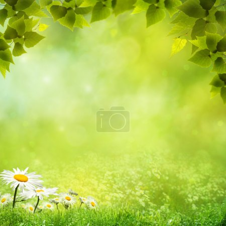 Photo for Beauty natural backgrounds for your design - Royalty Free Image