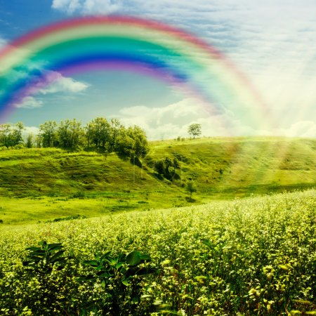 Photo for Rainbow on the meadow. Abstract natural backgrounds for your design - Royalty Free Image
