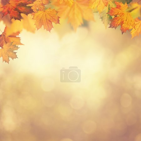 Photo for Abstract autumnal backgrounds for your design - Royalty Free Image
