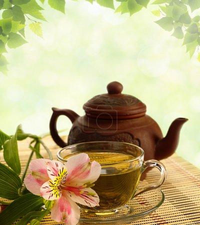 Photo pour Cérémonie du thé. thé vert, fleur et théière - image libre de droit