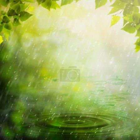 Summer rain. Abstract natural backgrounds