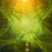Tropical afternoon, abstract environmental backgrounds