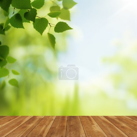 Photo for Wooden desk over beauty natural backgrounds for your design - Royalty Free Image
