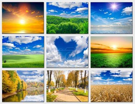 Photo pour Nature - image libre de droit