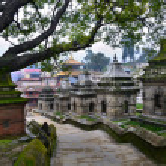 Pashupatinath temple complex on Bagmati River in K...