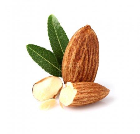 Almonds kernel with leaf...