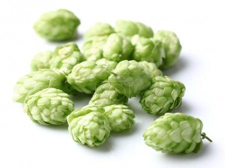 Heap of hop