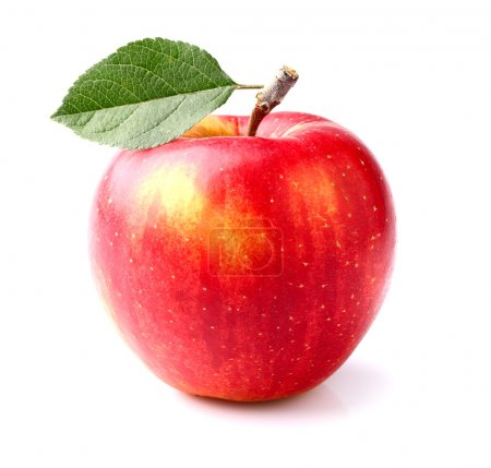 Photo for Ripe apple - Royalty Free Image