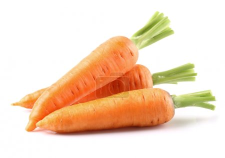 Photo for Fresh carrots on a white background - Royalty Free Image