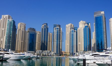 Yacht Club in Dubai Marina