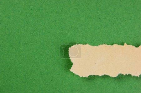 torn strips of newsprint on a green background