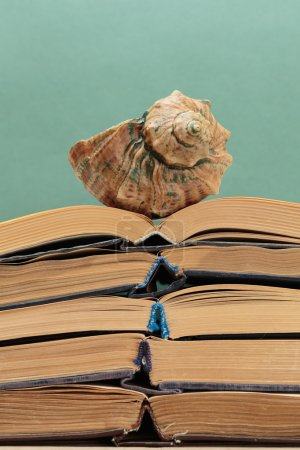 old books on a wooden shelf and seashell