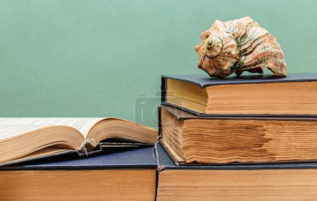 Photo for Old books on a wooden shelf and seashell - Royalty Free Image