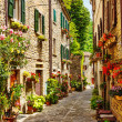 Narrow street in the old town in Italy...