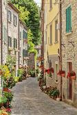 Narrow street in town