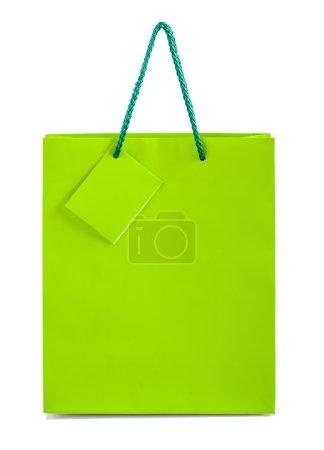 single green paper bag