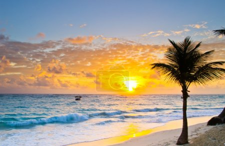 Photo for Palm trees on the background of a beautiful sunset - Royalty Free Image