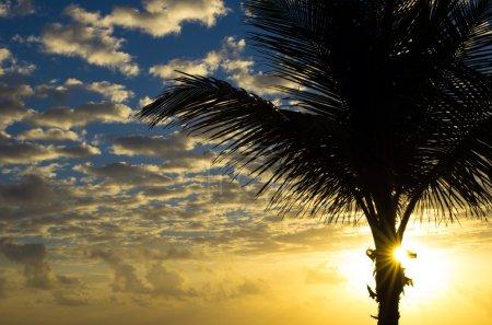 Photo pour Beau coucher de soleil au-dessus de la mer - image libre de droit