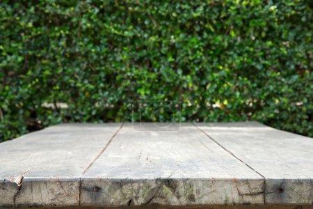 Empty table in garden...