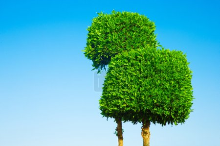 Photo for Alone trees on sky background - Royalty Free Image