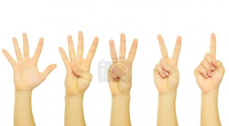 Hands numbers