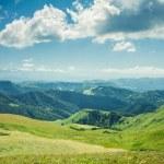 Summer mountains green grass and blue sky landscap...