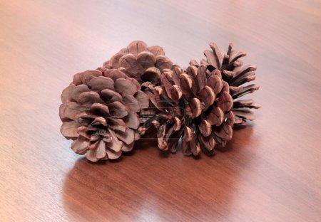 Fir cones on wooden desk