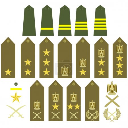 Turkish army insignia