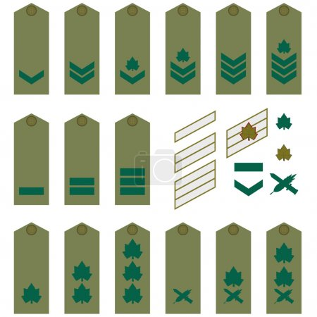 Turkish army insignia