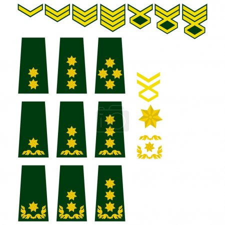Georgian armed forces insignia