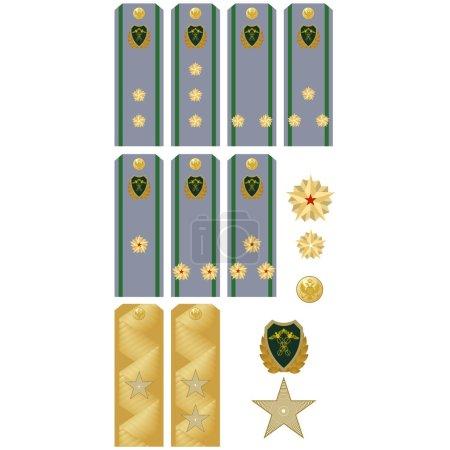 Insignia Customs Service of Russia
