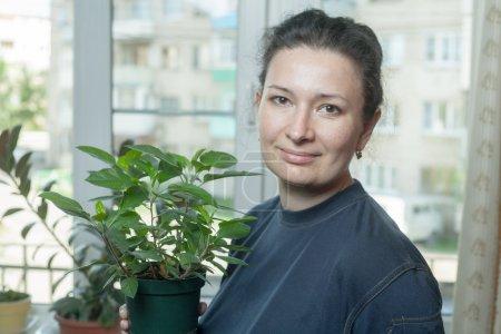 Photo pour Femme tenant pot de fleurs, avec plante d'intérieur - image libre de droit