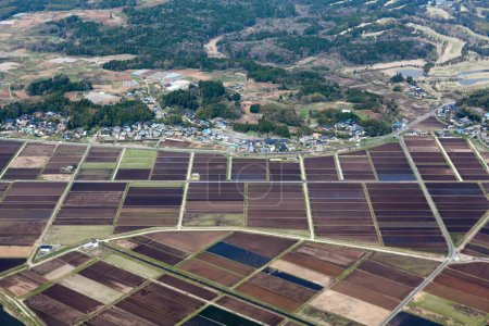 Rice meadows and fields near small Japanese village. Aerial view from aircraft. Japan