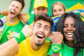 partisans du Brésil au stade