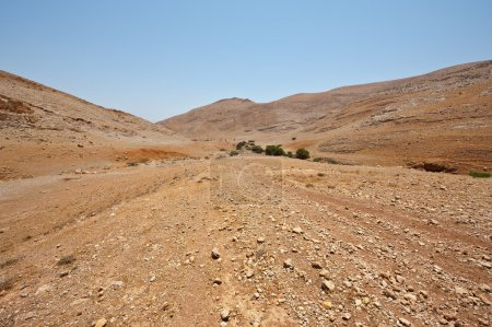 Photo for Big Stones in Sand Hills of Samaria, Israel - Royalty Free Image
