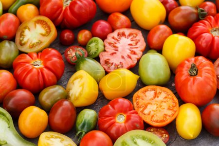 Photo for Colorful tomatoes - Royalty Free Image