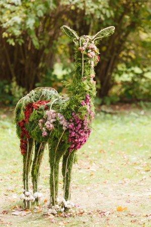 Foto de Lama flores - Imagen libre de derechos
