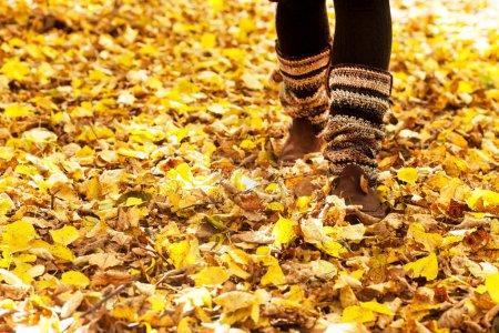 Photo pour Promenade à travers les feuilles d'automne - image libre de droit