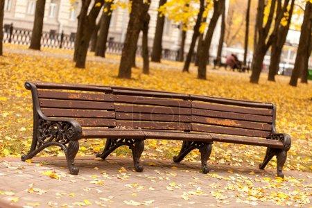 Photo pour Banc vide dans le parc - image libre de droit