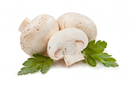 Photo for Fresh mushrooms and green parsley leaves isolated on white background - Royalty Free Image