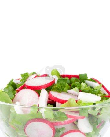 Photo for Radish salad - Royalty Free Image