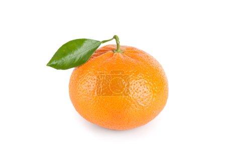 Photo pour Mandarine avec feuilles isolé sur fond blanc - image libre de droit