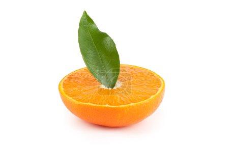 Photo pour Feuille et tranche d'orange mûr fraîche - image libre de droit