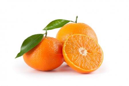 Photo pour Oranges - image libre de droit