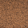 Expanded clay aggregate...