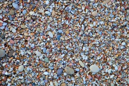 Photo pour Fond de cailloux de mer ronds de couleur - image libre de droit